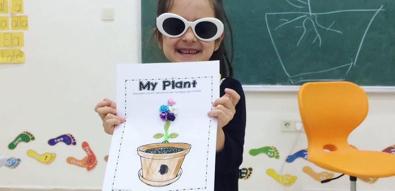 Bitkinin Bölümleri